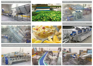 China Fresh Cut Vegetable Canning Equipment Stainless Steel IP65 Protection Grade supplier