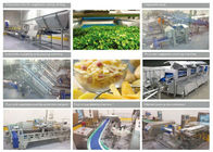 China 380V Commercial Food Canning Equipment Fresh Cut Fruit / Vegetable Production Line company
