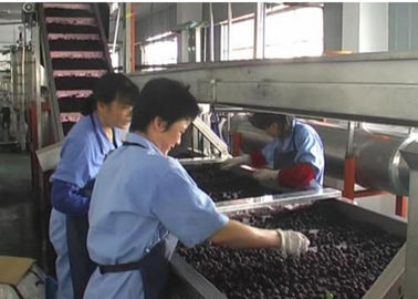 China Automatic Small Scale Canning Equipment Canned Blueberry Production Line factory